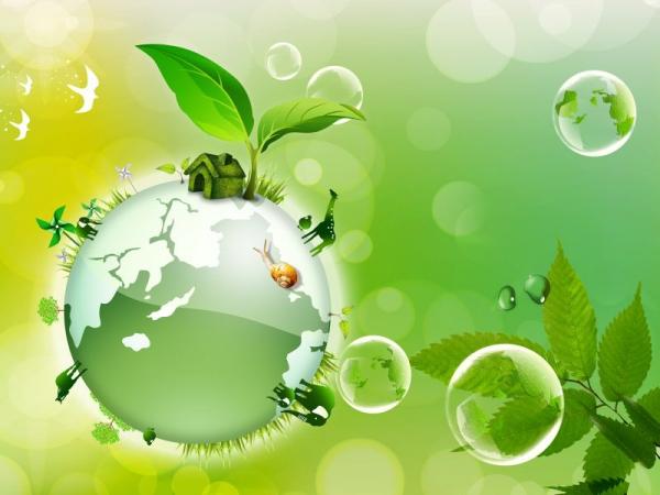 Экологические стихи для детей