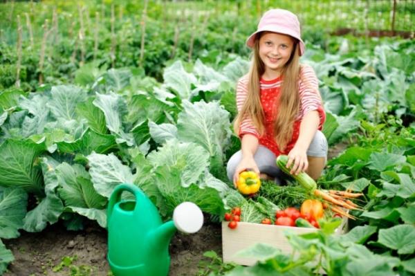 Огород для ребенка или делаем детскую грядку